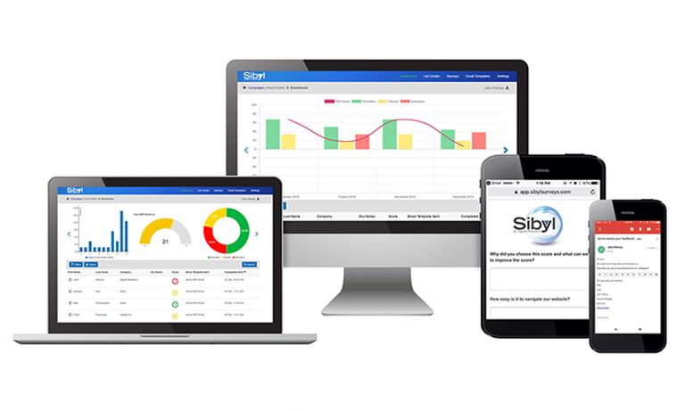 Sibyl™ NPS® Software Platform for B2B Customer Experience Launched