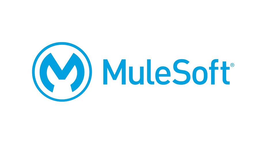 mulesoft api manager documentation