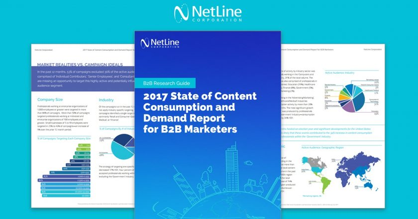 Netline Content Consumption Report