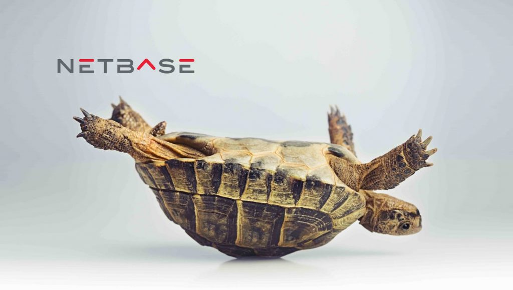 NetBase Instant Search Achieves Hyper-Growth Rate Since Launch in February 2017
