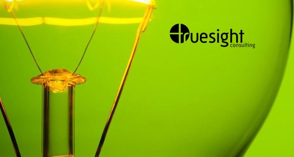 Truesight Consulting Expands Global Footprint with Formal Launch of Expanded Delhi Office