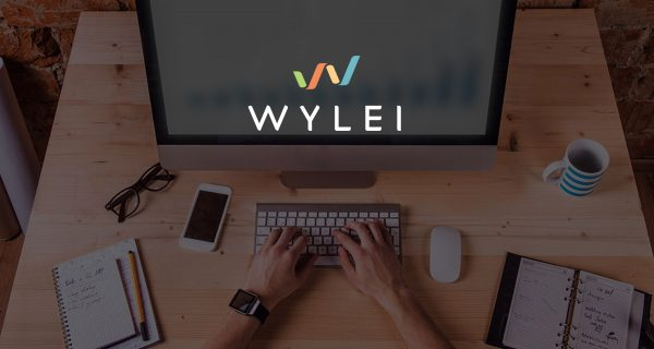 Wylei Appoints J&J Veteran Denice Torres to Board of Directors