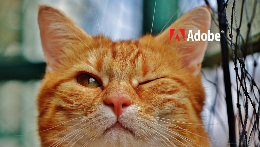 Adobe Advertising Cloud Set to Transform Digital Audio Ads Targeting on Smart Speakers