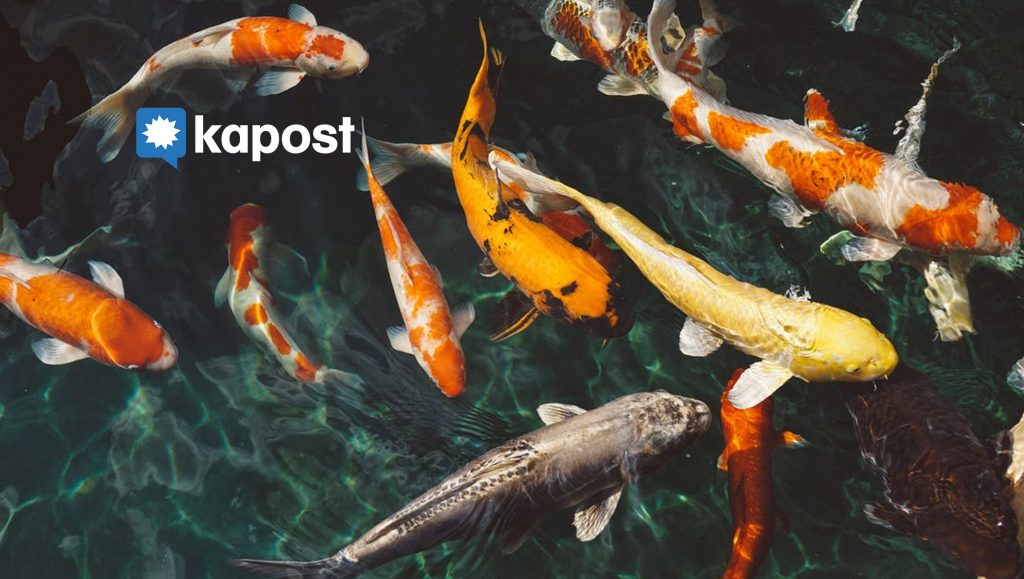 Kapost Benchmark Identifies the State of B2B Sales-Marketing Alignment