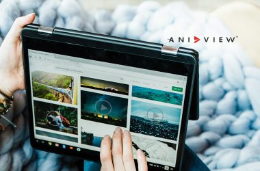 Aniview and Pixalate Team Up to Fight Ad Fraud