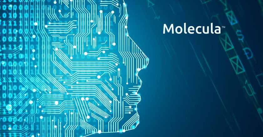 Molecula launches to Make Enterprise Data AI-Ready