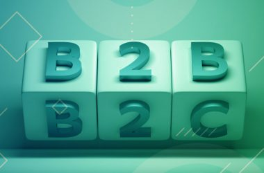 The Blurring Lines Between B2B and B2C