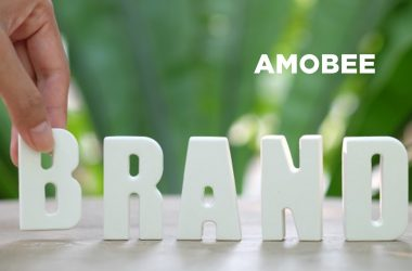 Amobee Partners with LiveRamp's IdentityLink to Enhance Targeting and Measurement for Advertisers